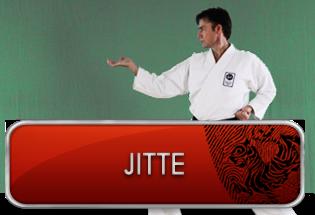 jitte_knap_forside