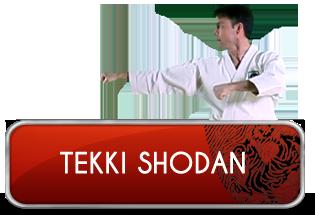 tekki_shodan_logo