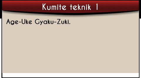 age-uke-gyaku-zuki-tekst-kumite
