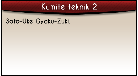 soto-uke-gyaku-zuki-tekst-kumite