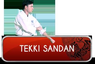 tekki_sandan_logo