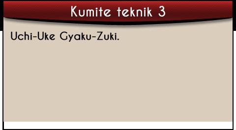 uchi-uke-gayku-zuki-tekst-kumite
