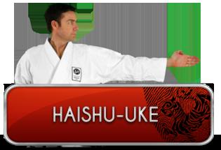 haishu-uke