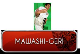 mawashi-geri