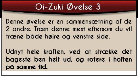 oi-zuki-ovelse3-tekst