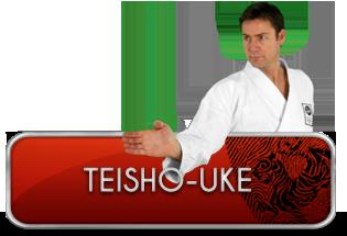 teisho-uke
