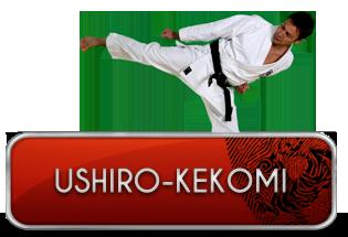 ushiro-kekomi