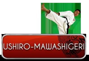 ushiro-mawashi-geri
