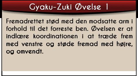 gyaku-zuki-ovelse1