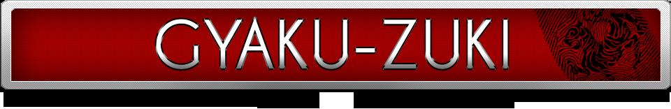 gyaku-zuki-top