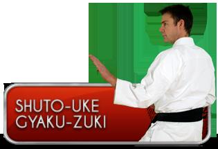 shuto-uke-gyaku-zuki
